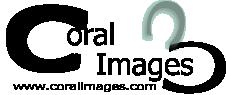 Coral Images Digital Marketing